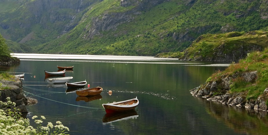 Norway, Impressioni 2001